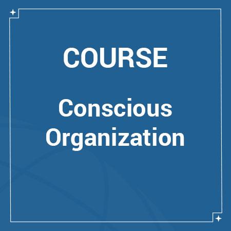 cmi-course-organization