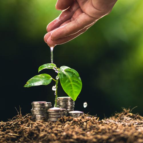maestría-direccion-finanzas-sostenibles