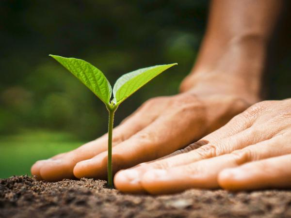 titulo-experto-rsc-sostenibilidad-online