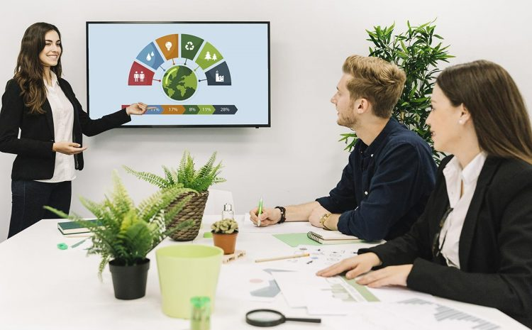 PyMEs ante el modelo de desarrollo sostenible